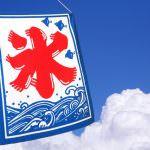 【2018年】自宅で作れる!ふわふわのかき氷機5選
